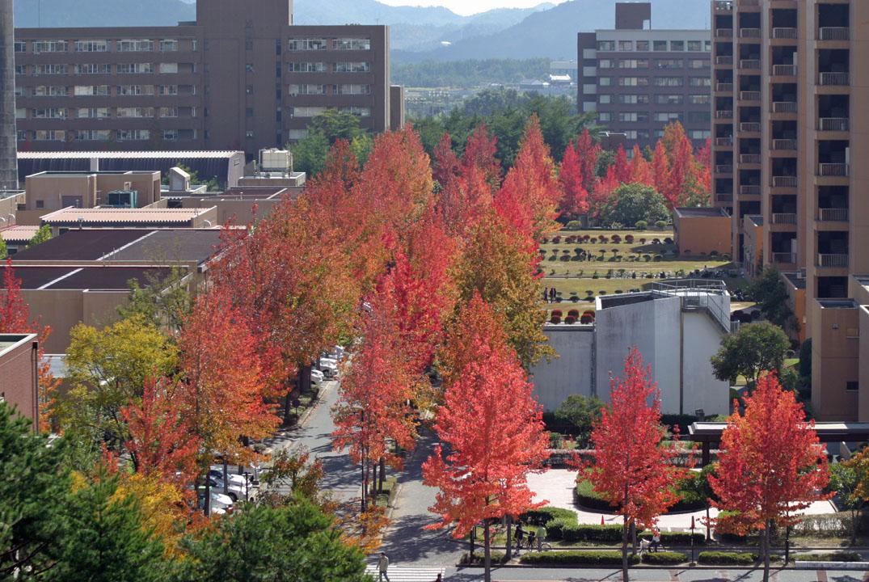 HIroshima University, Higashi-Hiroshima, Japan
